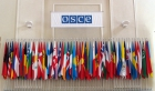 The OSCE's Role in a Changing World: New Steps for the Future