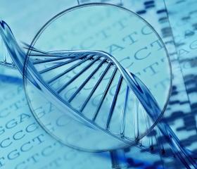 Биология и информатика: в ожидании третьего прорыва?