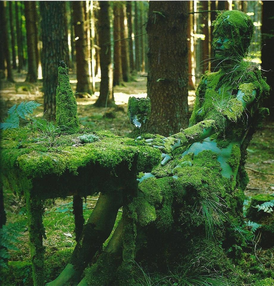 Скрап открытка, в лесу смешные картинки